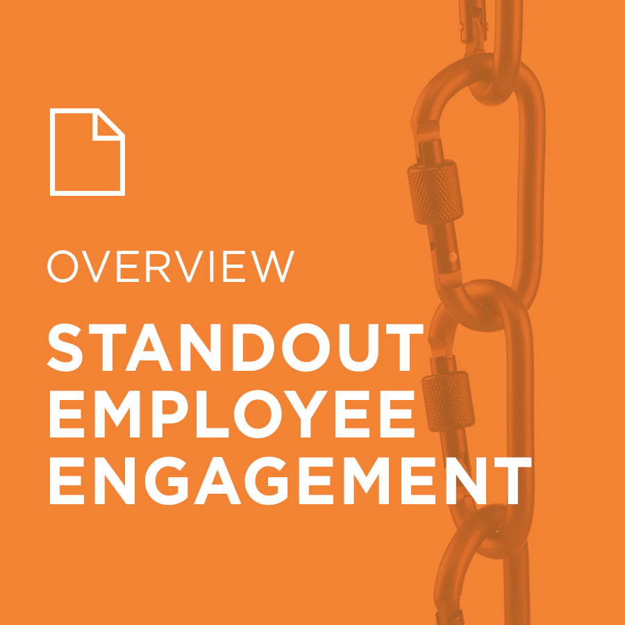 Image for StandOut Employee Engagement portfolio entry