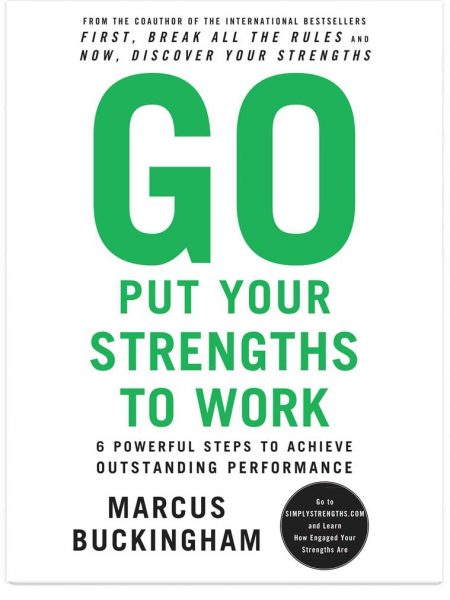Image of Go Put Your Strengths To Work cover.